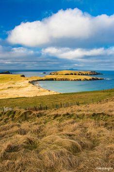Aller à Shetland, au