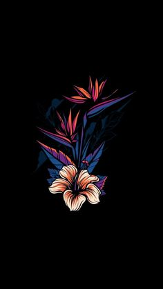 17 Ideas For Flowers Wallpaper Iphone Black Wallpapers Android, Iphone 6 Wallpaper, Whats Wallpaper, Iphone Wallpaper Tumblr Aesthetic, Black Aesthetic Wallpaper, Phone Screen Wallpaper, Galaxy Wallpaper, Aesthetic Wallpapers, Cartoon Wallpaper
