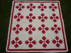 I'm into red and white quilts right now.