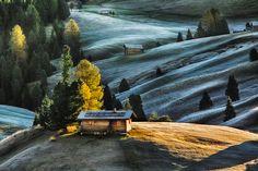Dolomites - Alpe di Siusi - Frosty Morning by Michael Bennati, via 500px
