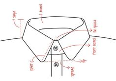 Know More & Be Ignorant No More. 6 types of collar you must Know.