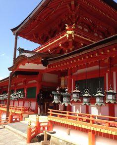 Nara 2016 ❤️
