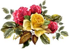 flower free desktop wallpaper by Isabella Walter (2017-03-21)