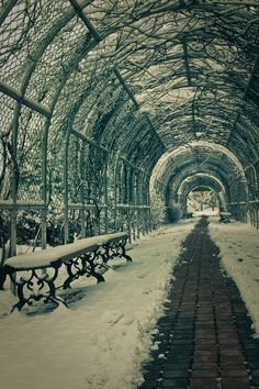 Mulhyangi Arboretum, Osan City, Korea by Megan Ahrens