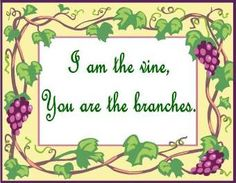 37 Best I am the Vine, You are the branches images in 2015