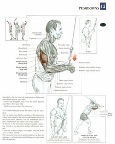 Pushdowns ~ Re-Pinned by Crossed Irons Fitness