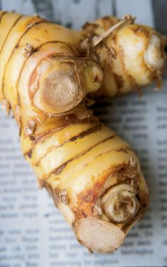 Lengkuas (Indonesia) = Laos (Galangal)  I buy this as White Ginger. This year I,m growing some for fun. Probably way to cold here.