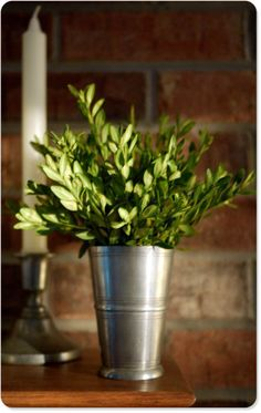 Love this simplicity of boxwoods and a mint julep cup -- who doesn't have boxwoods in their front yard and a julep cup in the cubbord (oh, just me, a Kentucky girl)?