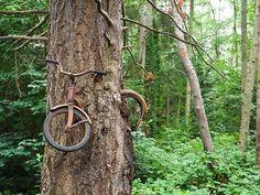 La nature reprend ses droits dans les endroits abandonnés par l'homme, et comme le prouvent ces images spectaculaires rassemblées par le site AllDay.com, rien ne lui est de trop.