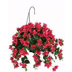 hanging baskets for imitation flowers - Bing Images
