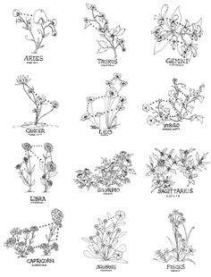 This is Me in Internet Form — zoazig: Floral Constellations THIS. This is Me in Internet Form — zoazig: Floral Constellations THIS. Foot Tattoos, Body Art Tattoos, Small Tattoos, Sleeve Tattoos, Tatoos, Tattoo Art, Tattoo Quotes, Orion Tattoo, Small Leo Tattoo
