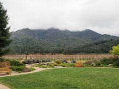 Family friendly wineries in Sonoma California
