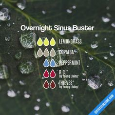 Diffuser Blend Recipe: 3 drops Lemongrass, 3 drops Copaiba, 2 drops Peppermint, 2 drops R. Oils For Sinus, Essential Oils For Colds, Essential Oil Diffuser Blends, Essential Oil Uses, Young Living Essential Oils, Essential Oil Cold Remedy, Purification Essential Oil, Oils For Sore Throat, Aromatherapy Diffuser