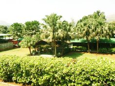 Greengate Resorts, Mulshi, Pune