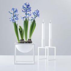 The Line candleholder and Kubus Bowl in white make a great Spring couple. . #bylassen #bylassenkubus #kubus #kubus4 #candles #candleholder #candlelight #lysestage #kubusbowl #bowl #interior #interiør #functionalism #design #interiordesign #scandinaviandesign #danishdesign #nordicdesign #designclassic #apartmenttherapy #nothingisordinary #petitejoys
