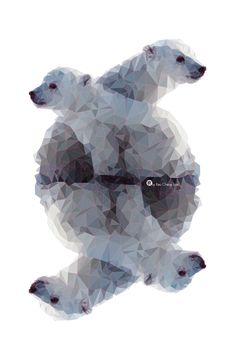 Abstract geometric polar bear cubs. This seems to give the ice bear a less threatening feel.