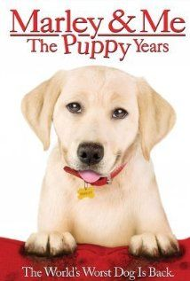 """Set between scenes of Owen Wilson's movie: The Grogans' son (and his little dog too) summer with Grandpa (Donnelly Rhodes, """"Soap""""). While training Marley, the boy gets the idea to enter him in a dog show. (As this is a kiddie-targeted video, Marley talks - to other dogs.) Written and directed by soap actor Michael Damian (writing partner his wife, the daughter of """"Roscoe P. Coltrane"""")."""