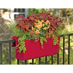 Colorful railing planters make balcony gardens burst.  Self-watering planters are a convenient place to grow flowers & herbs on any railing or ledge.