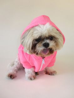 PUPPY AT HEART - Fleece Zip Hoodie in Two Colors | TRAITS - features my dog Baby!