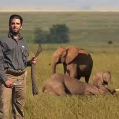 Donald #Trump admires his sons #hunting skills & has been financing their sickness from an early age. #BanTrophyHunting