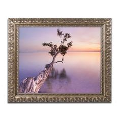 Water Tree XI by Moises Levy Framed Photographic Print