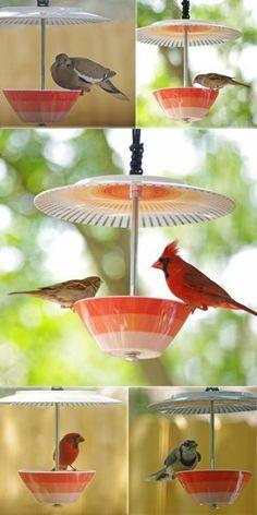 vogelfutterhaus selber bauen Porzellanteller und Schüssel
