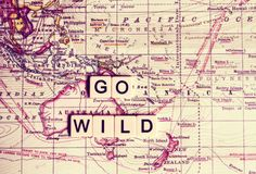 Go Wild Painting Prints on Wrapped Canvas