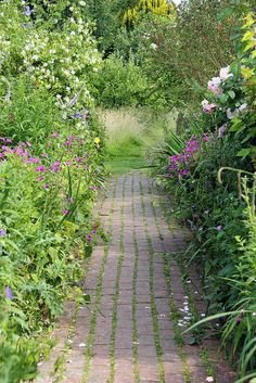 Garden Path, Monk's House, Sussex, England.  Virginia Woolf's home.