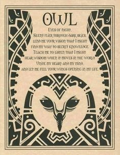 Solitary Fire Walker's Book of Shadows: Owl