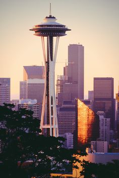 The Ultimate Seattle Bucket List to help plan your trip! The top 50 things to do in Seattle if you have never been before. Popular attractions to visit along with unusual and unique suggestions you won't find anywhere else. Seattle Travel, Seattle City, Seattle Skyline, Seattle Sightseeing, Seattle Usa, Road Trip Usa, Grey's Anatomy, Seattle Underground, Things To Do Seattle
