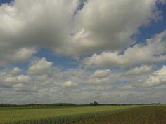 Felhős