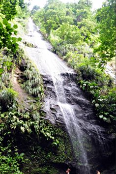 Les plus belles cascades de Martinique – Carnet d'un Antillais Outre Mer, Les Cascades, Safe Place, West Indies, Colonial, Caribbean, Waterfall, Country Roads, Europe