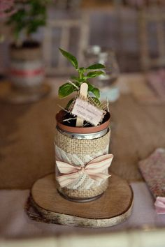favour ideas. herbs or smaller plants in tins
