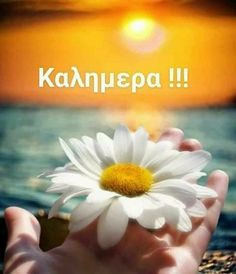 Greek Language, Good Morning Quotes, Happy Sunday, Mom And Dad, Good Night, Beautiful Pictures, Shit Happens, Mornings, Greece