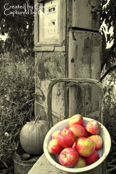 apples---Fantastic still life photo!  I'll paint this one for myself!