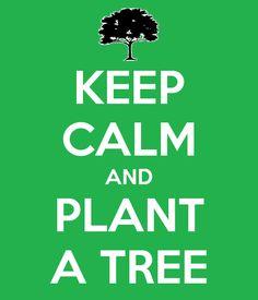 KEEP CALM AND PLANT A TREE