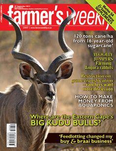 27 September - 'Where are the Eastern Cape's big Kudu bulls?'