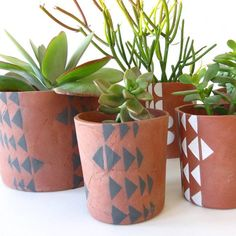 Love the texture design to these succulent containers.