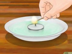 How to Eliminate Fleas from Your Home for Free: 7 Steps