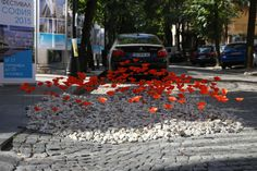 Poppy Park(ing) transforming carparking into a Flower Meadow in Sofia, Bulgaria #landscapearchitecture #parkingday #design #poppy #bulgaria
