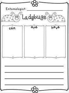 Insects Writing Research Unit w/Literacy/Math  Freebie in the download preview