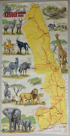 Very rare and stunning promotional travel poster Kruger park South Africa big 5 signed kitchen tea towel Hans Kumpf design Giraffe Neck, Wildlife Park, Local Artists, Travel Posters, South Africa, Screen Printing, Vintage World Maps, Cute Animals, 1970s Kitchen