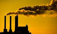 essays on pollution for kids