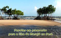 Pacotes para a Ilha de Marajó na Alta Temporada #marajó #altatemporada #viagens #pacotes #promoção