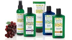 Andalou Naturals leads the way for non-GMO beauty #gmo