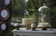 bell jar with base - Google Search