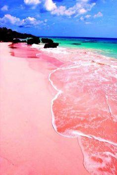 Praia-de-rosa em Bermuda!