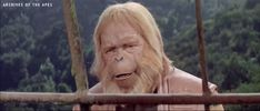 Archives Of The Apes: Maurice Evans