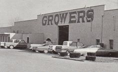 Growers Tobacco Warehouse, Carrollton, Kentucky - We would go here with Dad and Grandpa Hewitt. I remember eating in the little restaurant there on the front of the warehouse. Carroll County, My Old Kentucky Home, Warehouse, Childhood, Restaurant, History, Places, Gold, Infancy