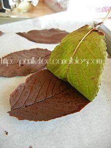 Feuille en Chocolat - Faîtes fondre 80 gr de chocolat et y tremper un côté des feuilles que vous aurez cuillies, elles doivent être propres et non traitées (j'ai pris celles du jardin), laissez redurcir le chocolat et ensuite « pelez » en enlevant la feuille pour ne garder que son moulage en chocolat .